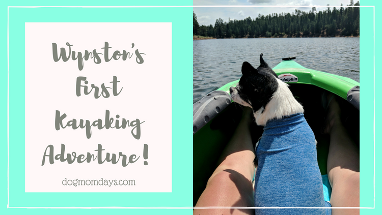 Wynston's first kayaking adventure