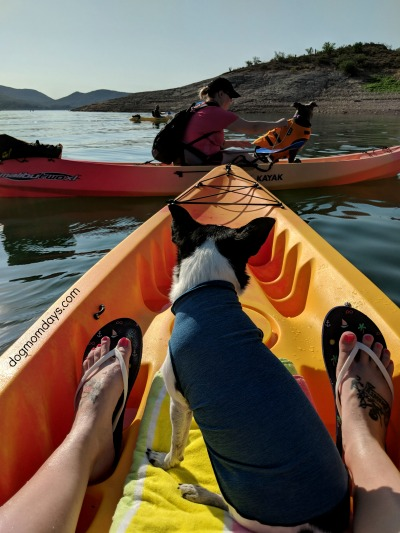 kayaking with dogs at Lake Pleasant