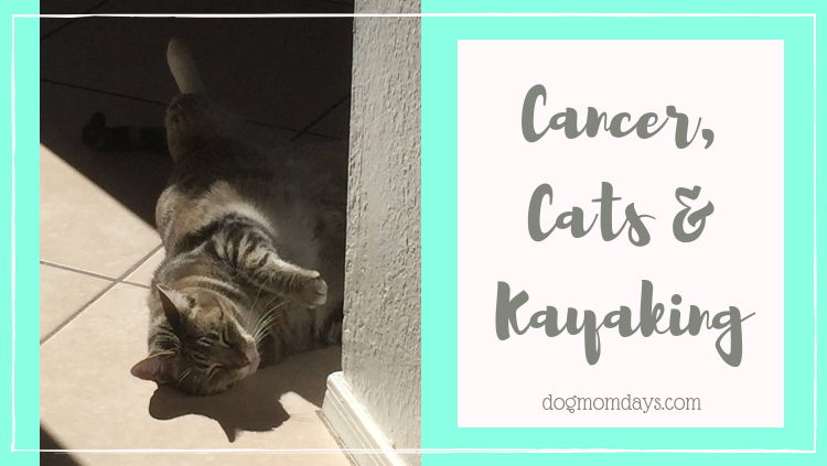 Cancer, Cats & Kayaking