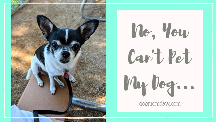 No, You Can't Pet My Dog…