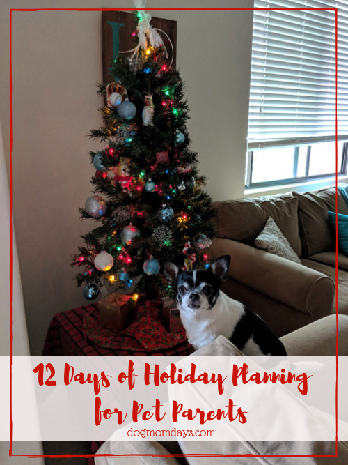 Holiday Planning for Pet Parents