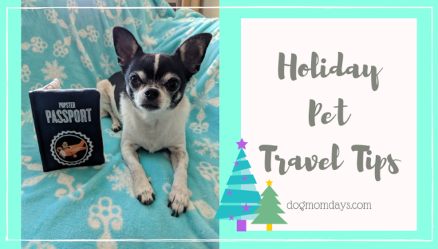 holiday pet travel tips