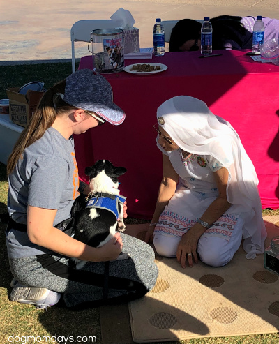 AAWL & SPCA Walk to Save Animals