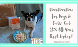 NomNomNow fresh food for dogs and cats