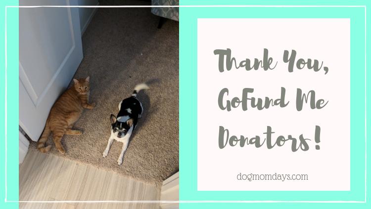 Thank You, GoFund Me Donators!