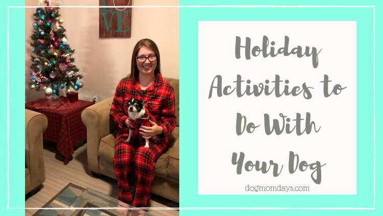 budget-friendly holiday activities to do with your dog