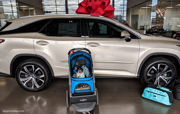 Phoenix Lexus Pet Safety event