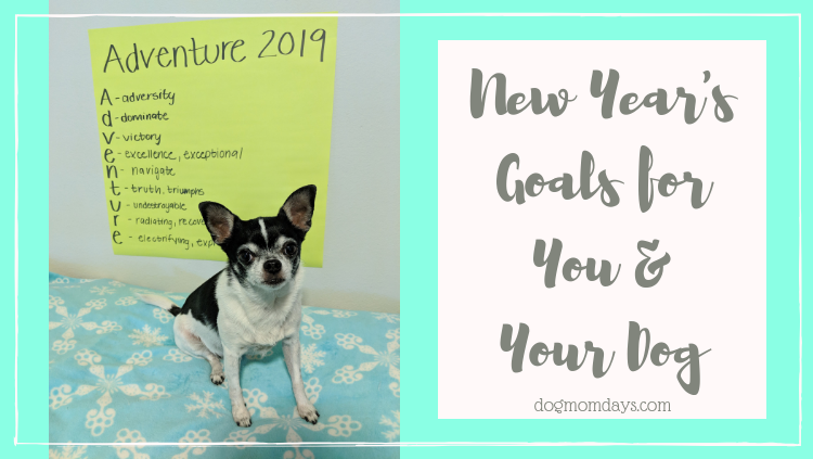 19 New Year's Goals for You and Your Dog
