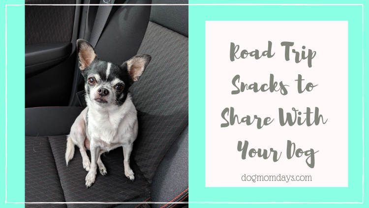 snacks to share with your dog on a road trip