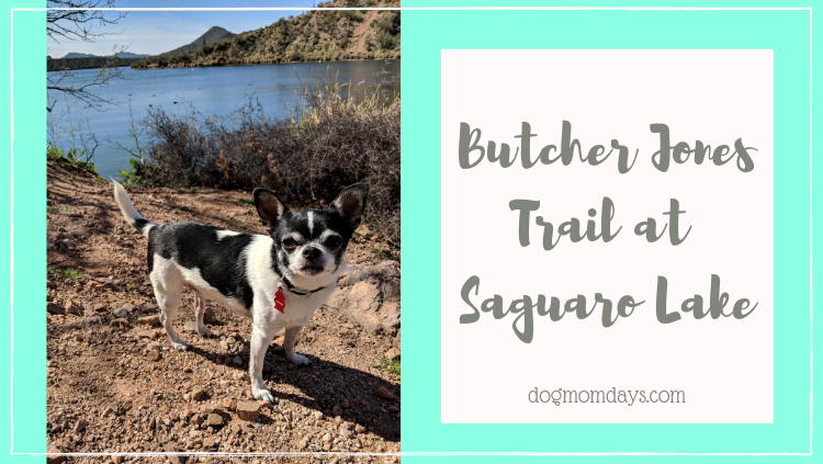 Butcher Jones Trail