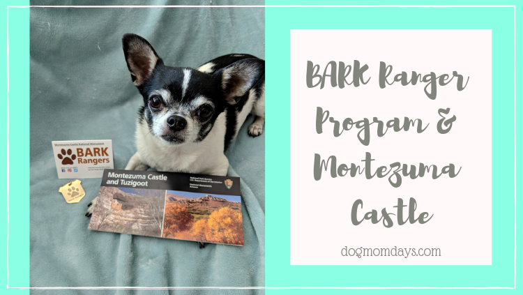 The BARK Ranger Program & Our Visit to Montezuma Castle