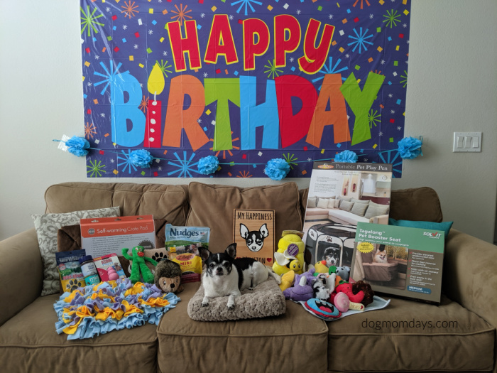 Wynston's 8th birthday