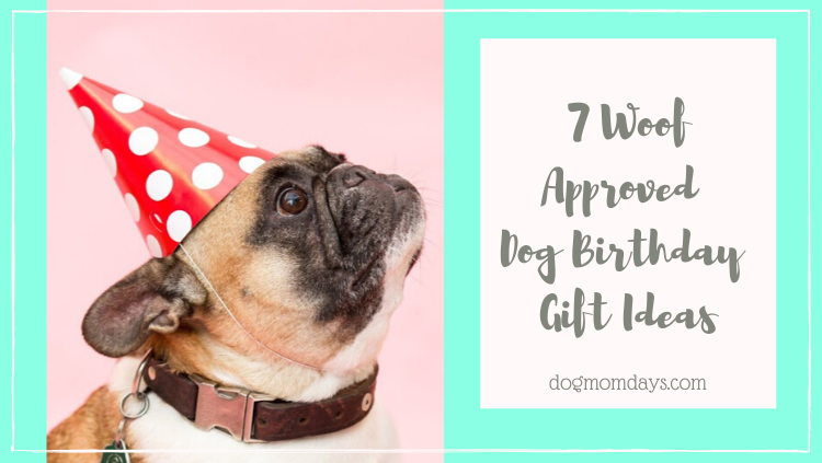 dog birthday gift ideas