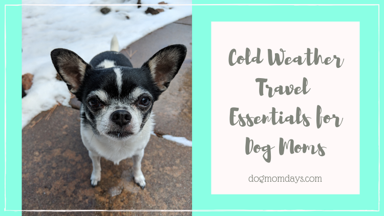 travel essentials for dog moms