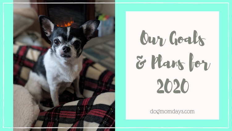 Our Goals & Plans for 2020