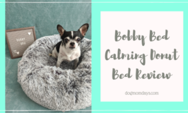 Bobby Bed Review