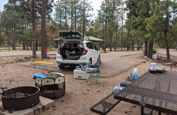 Crook Campground Review