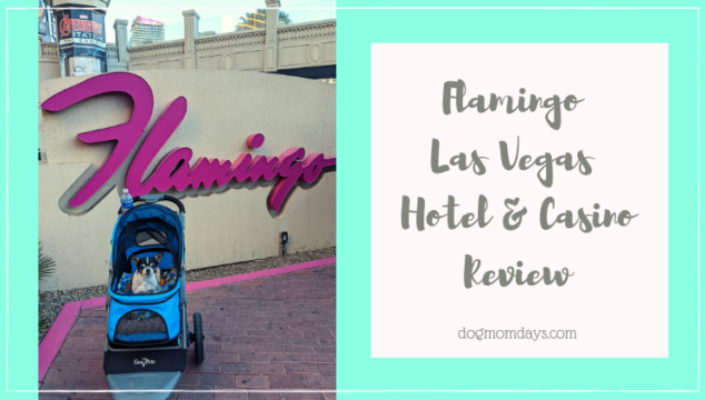 Flamingo Las Vegas Review