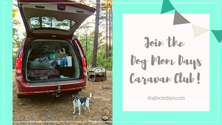 Dog Mom Days Caravan Club