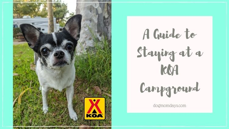 staying at a KOA campground