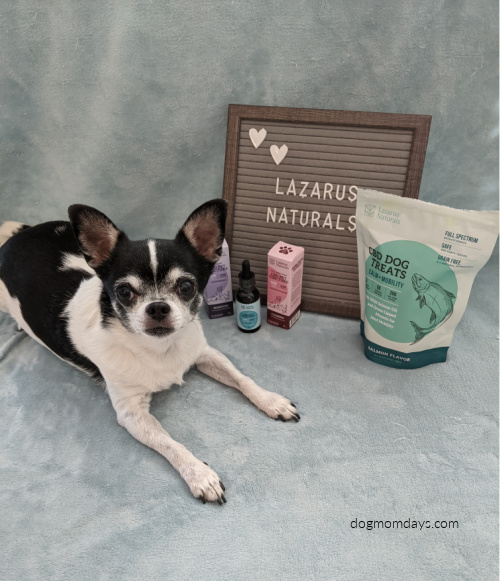 Lazarus Naturals CBD dog treats giveaway
