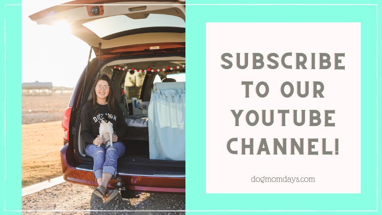 Subscribe to the Dog Mom Days YouTube Channel!