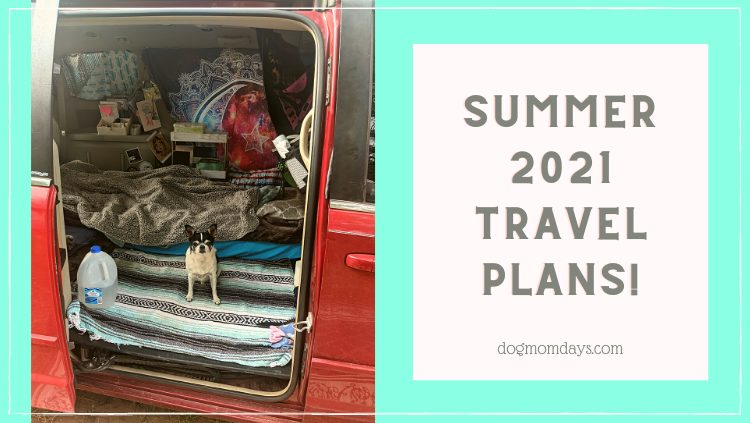 Updates and 2021 Summer Travel Plans!